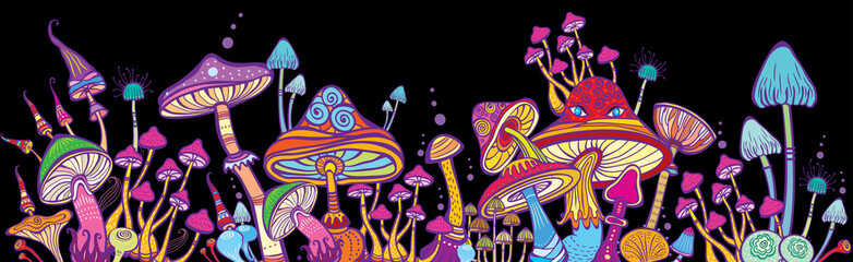 Fototapeta Horizontal banner Groups of decorative mushrooms obraz