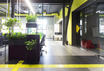 Co-working office in loft style with green live plants
