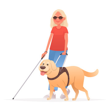 Blind woman on a walk with a guide dog on a white background. People with disabilities