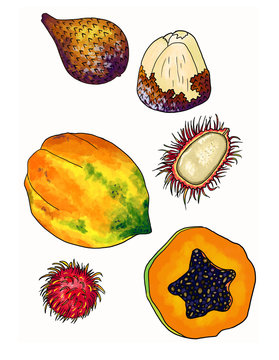 A set of tropical fruits: papaya, rambutan and snakefruit. Bali organic food.