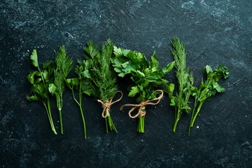 Fotomurales - Fresh spices and herbs: green parsley and dill. Top view. Free space for your text.