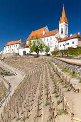Fotomurales - Town Vineyard Znojmo, South Moravia Czech Republic