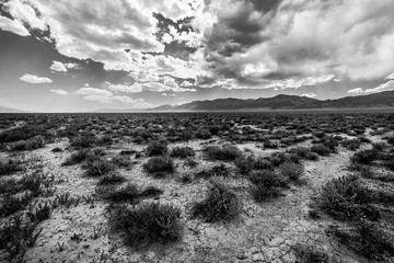 """A view of the Nevada Desert and the Ruby Mountains, as seen from Highway 50, """"The Loneliest Road in America"""""""