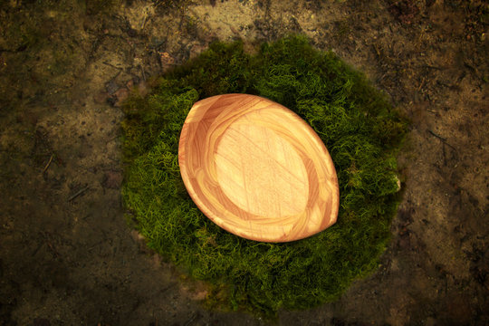 Wooden Bowl Fantasy Background Photo Prop with vine and green moss Isolated on natural ground.