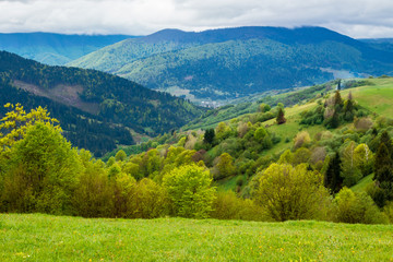 beautiful rural landscape of mountainous area. countryside scenery on a n overcast day in spring