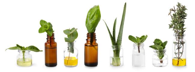 Fototapeta Bottles with different essential oils on white background obraz