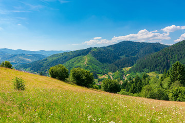 fields and meadows of rural landscape in summer. idyllic mountain scenery on a sunny day. grass covered hills rolling in to the distant ridge beneath a bright blue sky with fluffy clouds