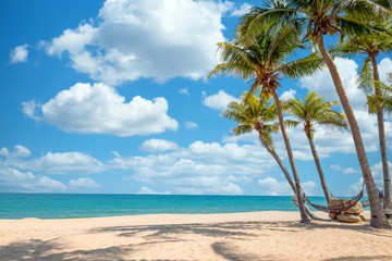 Fototapete - Exotic tropical beach landscape for background or wallpaper. Tranquil beach scene for travel inspirational, Summer holiday and vacation concept for tourism relaxing.