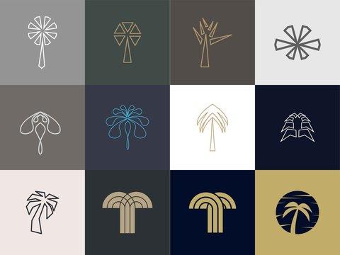 set of Premium palm logo design