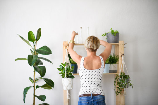 Rear view of young woman indoors at home, arranging plants on shelf.