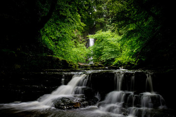 waterfalls inside the beech forest