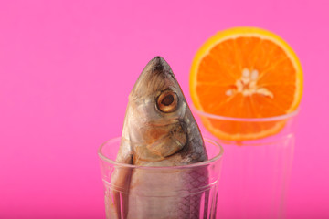 salted herring and orange in a cut glass on a bright background