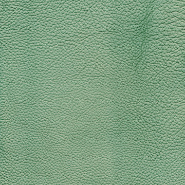 Mint detailed background texture of leather