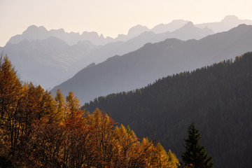 Wall Mural - EveningDolomite mountain tops silhouettes view