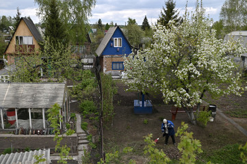 A woman works in a garden at her dacha in Omsk