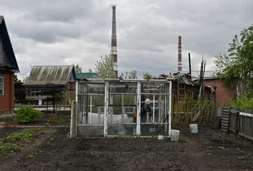 A woman works in a greenhouse at her dacha in Omsk