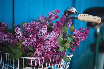 Papiers peints Velo bicycle basket with a bouquet of lilacs