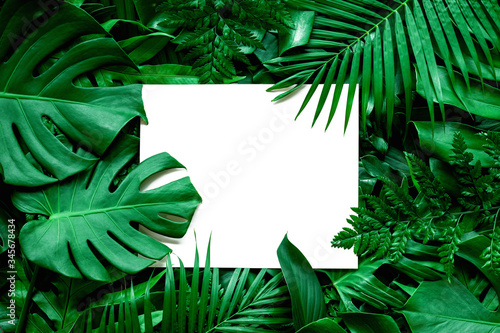 Wall mural tropical green leaves and palms  background with white paper card note, nature flat lay concept