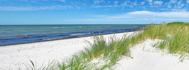 Foto auf AluDibond Blau Ostseestrand mit Dünen und Meer im Sommer - Ostsee Panorama