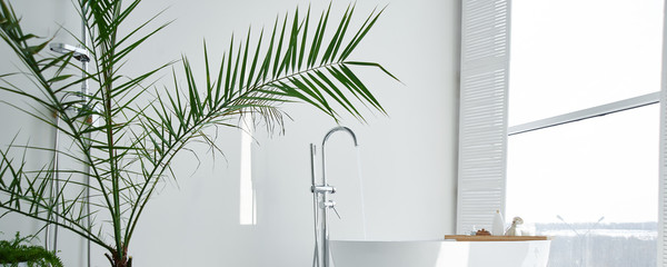 White bathroom modern interior. Luxurious decor with plants, window, spa at home. Bathtub is filled with tap water, nobody