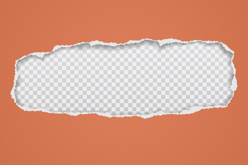 Torn, ripped orange paper hole with soft shadow, frame for text is on white squared background. Vector illustration Fotomurales