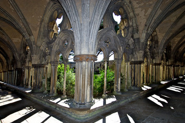 View into cloister garth, Cathedral Church of the Salisbury diocese, Salisbury, England