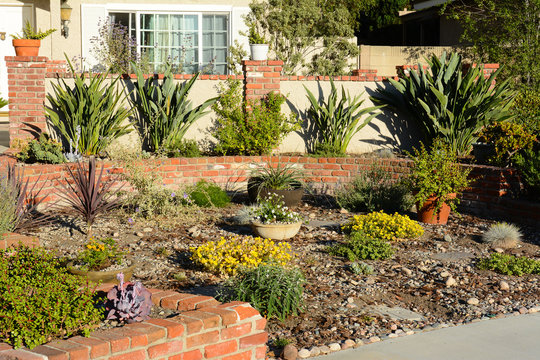 A Southern California water wise residential garden, featuring native and drought tolerant plants.