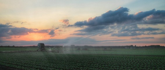 Scenic View Of Agricultural Field Against Sky During Sunset Fototapete