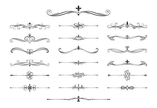 Hand drawn calligraphic dividers. Swirl victorian borders.  Vector isolated royal decor separators. Classic wedding invitation calligraphic lines.