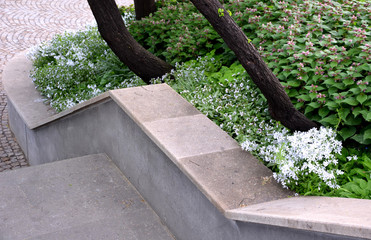 concrete retaining wall at the large staircase in the park the flowerbed area is planted with rich greenery of perennials granite paving of cubes