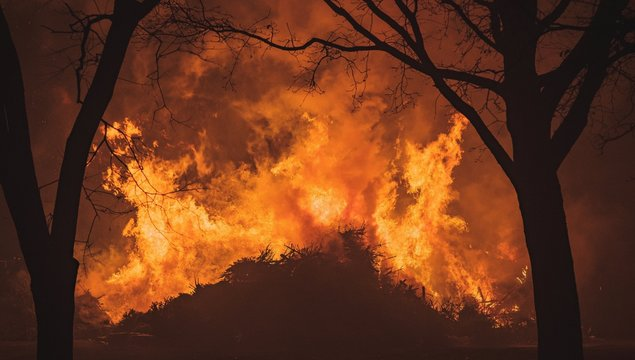 Intense flames from a massive forest fire. Flames light up the night