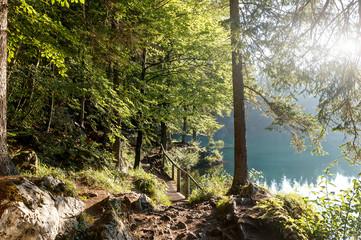 Fotomurales - Alpine lake and autumn forest under sunlight. Amazing nature landscape. fusine lake, Dolomites alps. Autumn sunset scenery.