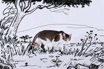 chat européen marchant avec un décor dessiné de jungle