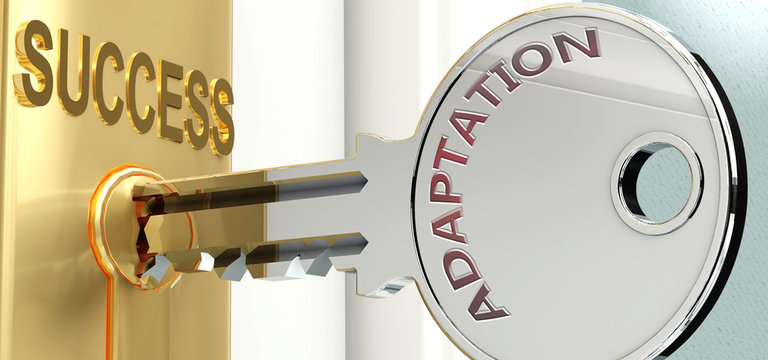 Adaptation and success - pictured as word Adaptation on a key, to symbolize that Adaptation helps achieving success and prosperity in life and business, 3d illustration