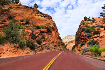 Fototapete - Road through the red rocky landscape of Zion National Park, Utah, USA