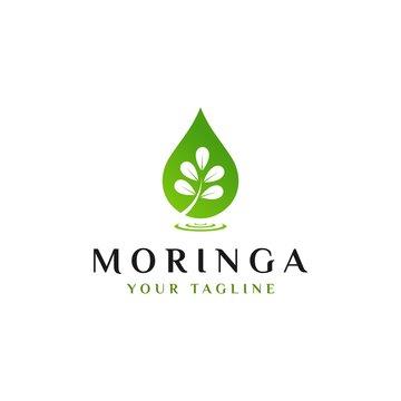 moringa logo design template