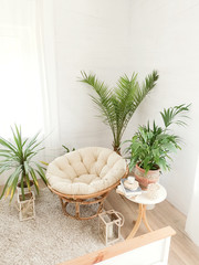 Papiers peints Style Boho House with cozy boho ethnic interior with plants.