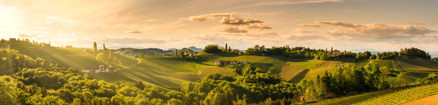 Panorama of vineyards hills in south Styria, Austria. Tuscany like place to visit.