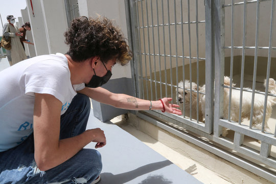 A man plays with dogs at Riyadh's animal shelter, dedicated to caring for animals amid fear that cats and dogs might contract or transmit the coronavirus disease (COVID-19), Riyadh