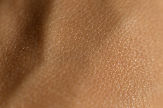 Skin texture. Macro close-up shot of skin