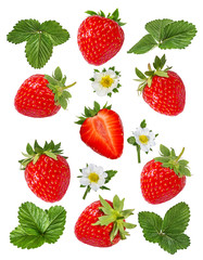 Fototapete - Strawberry with flower isolated on white background
