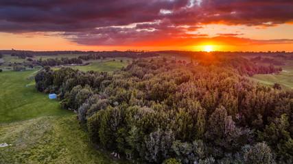 Foto auf AluDibond Hochrote Sunset Over the Bush
