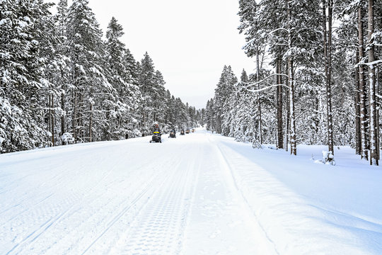 Row of snowmobilers cross Highway 20 in winter in Yellowstone