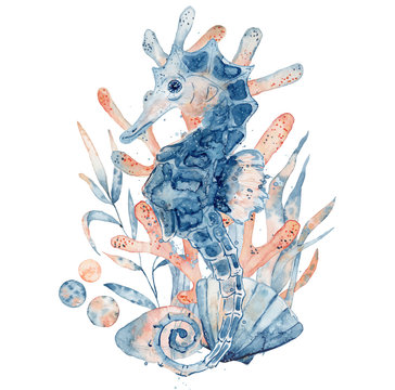 Watercolor illustration of seahorse in blue color with floral composition isolated on white background