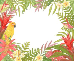Ingelijste posters Papegaai Tropical decoration frame for your text, vector illustration in vintage style with Parrot Sun Conure, Chameleon, plant Bromelia Guzmania and colorful leaves.