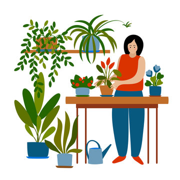 vector female character woman planting indoors flowers on table illustration