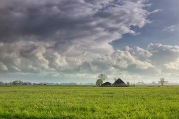Fototapete - raining sunny day ober Dutch farmland