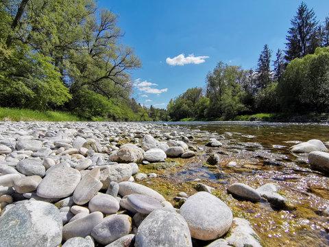 Natur mit Bäumen, Fluss und Steinen