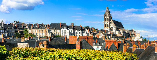 Landmarks and travel in France. Loire valley, medieval town Blois and famous royal castle