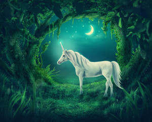 Fotobehang Bosdieren Unicorn in the magic forest